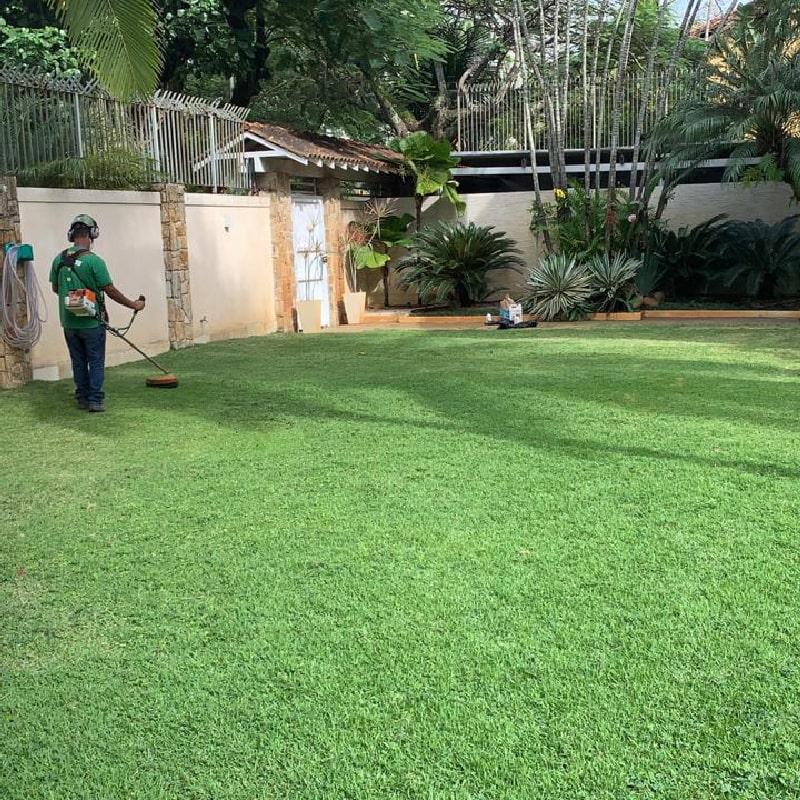manutencao-de-jardins-horto-girassol-(1)-min