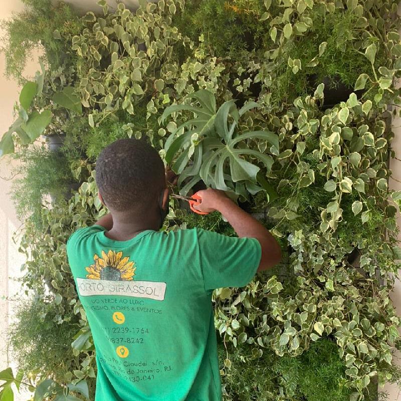 manutencao-de-jardins-horto-girassol-(3)-min