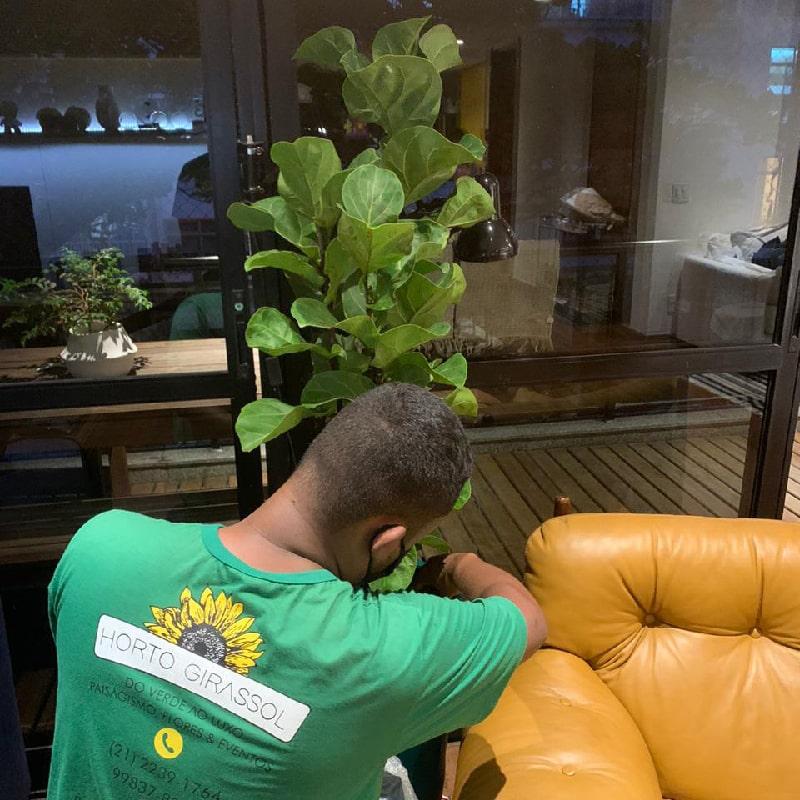 manutencao-de-jardins-horto-girassol-(4)-min