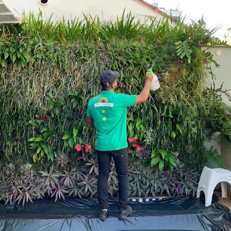 manutencao-de-jardins-horto-girassol-(7)-min